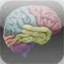 Psychology Apps | 3D Brain for iPhone, iPod touch, and iPad on the i