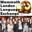 Mammoth London Language Exchange | Facebook