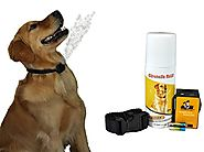 Best Bark Collars for Small Dogs Reviews | NO BARK Collar Citronella Spray Anti-Bark collar for Dogs Kit - Safe, Effective, and Humane Dog Barking Control collar