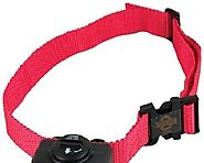 Best Bark Collars for Small Dogs Reviews | Best Bark Collars for Small Dogs Reviews - Tackk