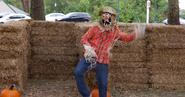 Funny Yet Terrifying Scarecrow Prank - Cactopia Viral Video, Photos, Quotes & Funny News