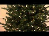 Artificial Christmas Tree | Slim Green Spruce Artificial Christmas Tree