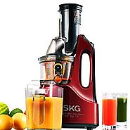 Skg Slow Juicer And Food Processor : Top 10 Best Rated Masticating Juicers Reviews A Listly List