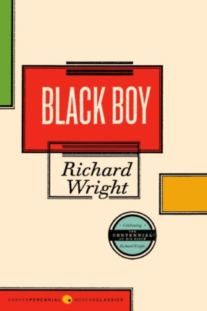 a comparison of richard wrights native son and black boy