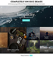 The Top 2014-2015 Wordpress Themes for Photographers | Salient - Responsive Multi-Purpose Theme