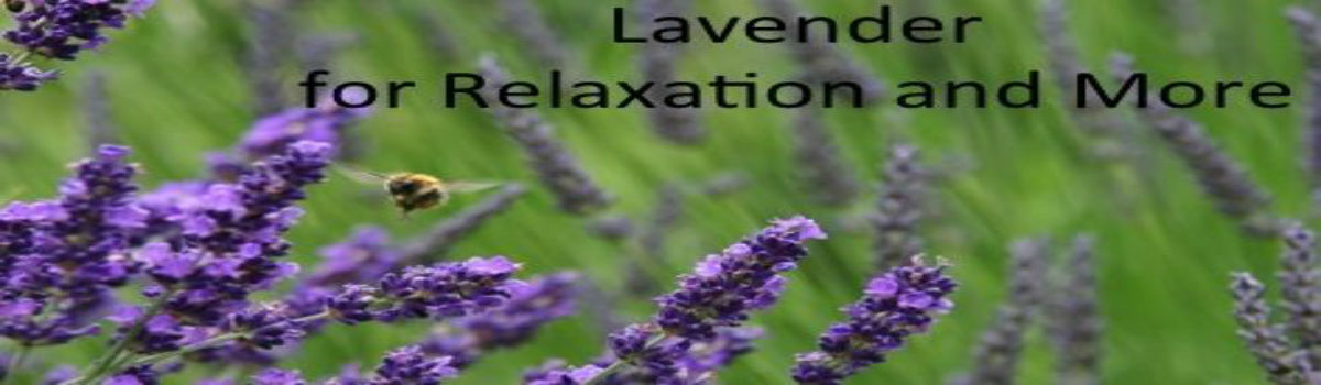 Lavender Essential Oil - Aromatherapy Recipes