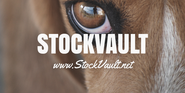 Royalty Free Image Resources | STOCKVAULT