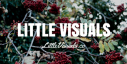 Royalty Free Image Resources | LITTLE VISUALS