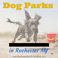 5 Star New York Real Estate Communities | Dog Parks In Rochester NY | Monroe County Dog Parks