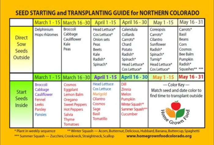 Zone 5 Northern Colorado Seed Starting Planting Calendar