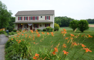 Bed and Breakfast Blogs | Red Cardinal Bed and Breakfast :: Blog