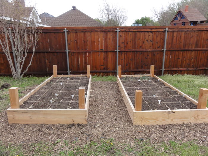 Radical Growing 10 Steps For Starting A Community Garden