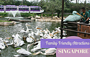 Great Things to do in Singapore | Singapore's Best Family-Friendly Attractions