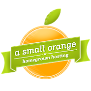 Starting a Blog | A Small Orange: Then You'll Need a Host