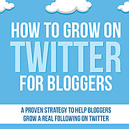 Learning & Education | eBook: How to Grow on Twitter for Bloggers - Wanna Bite