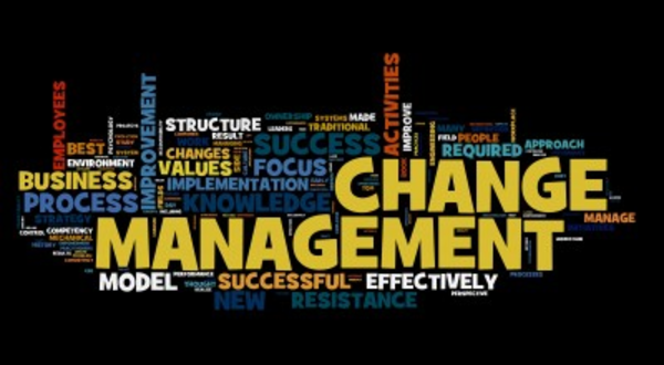 change management the business of change