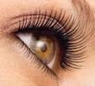 Beauty Treatments | Beautiful Lashes
