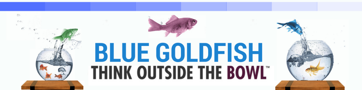 Headline for Blue Goldfish Project