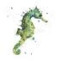 Socially Responsible Gift Giving | The Green Seahorse