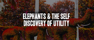 #39 Storytelling, Elephants & How We Discover Utility