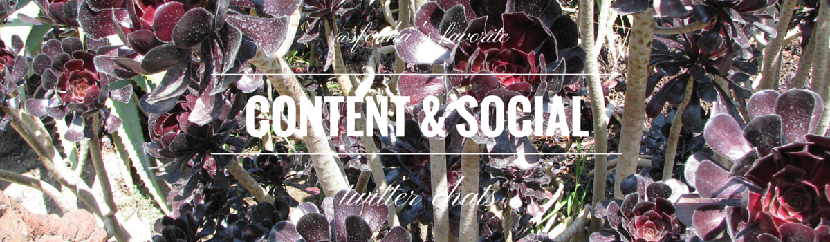 Content marketing and social media twitter chats