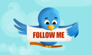 Is Following Everyone Equal to Buying Twitter Followers?