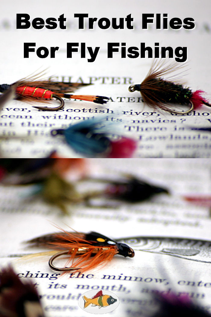 Best trout flies for fly fishing a listly list for Best fly fishing in us