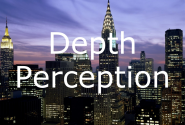 Depth Perception Cues | EDU290 Depth Perception Presentation