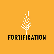Podcasts Made by Nonprofit Organizations and Government Agencies (that aren't media focused) | Fortification: Standing on the Side of Love