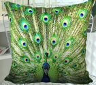 Fablegent XH106 - Elegant Decorative Throw Pillow Cover - Peacock Feather Fashion Design on Both Sides - Soft Velvet ...