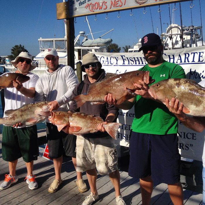 21 best fishing charters in north america a listly list for Best fishing in usa
