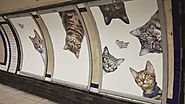 All the Ads in This London Subway Station Have Been Replaced by Pictures of Cats