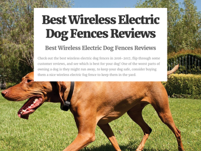 Electric Fence For Dog Electric Fencing For Dogs