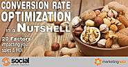 Conversion Rate Optimization – 20 Factors Impacting Your Sales and ROI [Podcast]