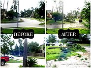 American Restoration Services | Crucial Steps to Take Before And After Hurricane Strikes