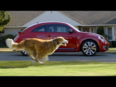 Best SuperBowl Commercial 2012 | The Dog Strikes Back: 2012 Volkswagen Game Day Commercial