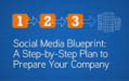 BFW SocMed Strategy | Social Media Blueprint: A Step-by-Step Plan to Prepare Compnay