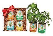 Garden-In-A-Can Gift Sets