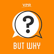 Podcasts for Children | But Why: A Podcast for Curious Kids by Vermont Public Radio on iTunes