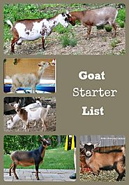 Here are some of the supplies you will need to start raising goats