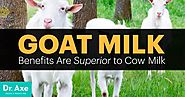 Goat milk is actually quite good for you