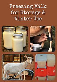 Here's how to freeze goat milk for long term storage