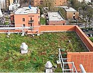 Green Roofing | US EPA