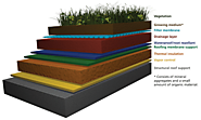 Green Roofing | What is a Green Roof?