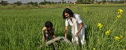 Most Popular Competitions September 2013 | The Greenpeace Challenge: A Water Pump (R)Evolution For Indian Farmers