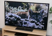 Best Large Screen Led TV 2016 | Top Rated Large Screen LED Tv