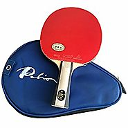 Best Ping Pong Paddle for Beginners - Reviews and Ratings 2017 | Palio Expert 2 Table Tennis Racket & Case