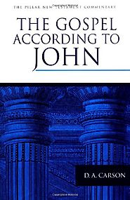 The Gospel According to John (The Pillar New Testament Commentary)