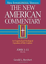 John 1-11 and John 12-21 (The New American Commentary)