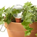 Amazon Best Sellers: best Plant Containers